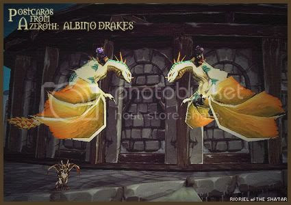 Postcards from Azeroth: Albino Drakes, by Rioriel Whitefeather