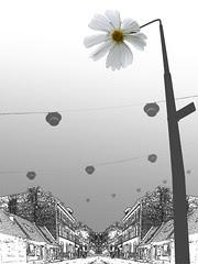 blomsterlampa