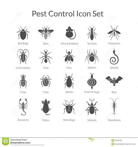 Vector Set Of Icons With Insects For Pest Control Business Stock Vector   Image: 63402328