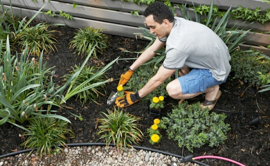 12 Ways To Get Rid Of Aggressive Weeds Without Resorting To Roundup | Care2 Healthy Living