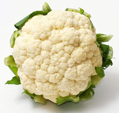 Couve-flor branca