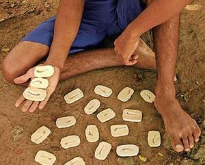 Pesquisadoras descobrem nova espécie de planta a partir de fóssil encontrado no Ceará