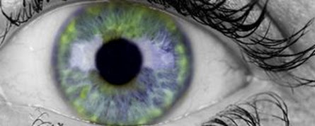 Scientists discover new layer of the human cornea - The University of Nottingham