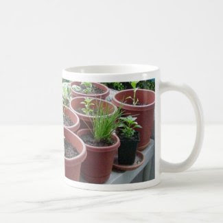 Herbs Spices Peppers Home Garden Classic White Coffee Mug