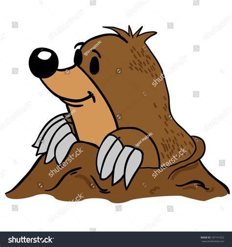Mole Cartoon Illustration Stock Illustration 187141352   Shutterstock