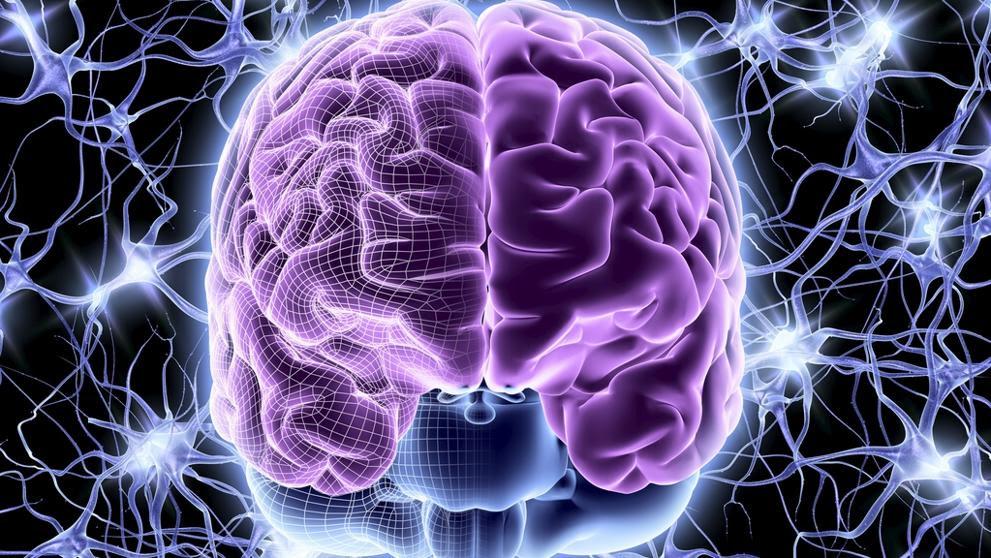Una nueva técnica mejora el diagnóstico de la epilepsia
