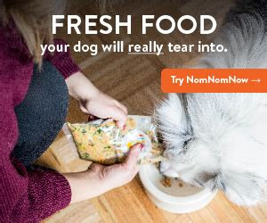 dog food  picky eaters