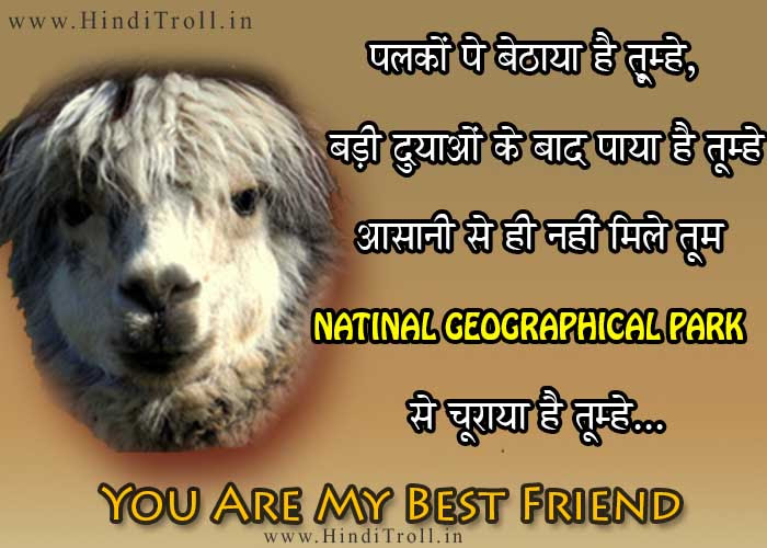 Best Friend Emotional Friendship Quotes In Hindi