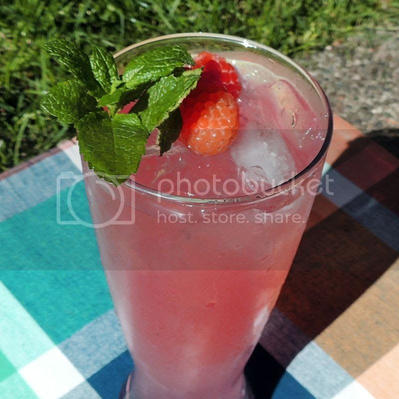 Sparkling Raspberry Lime Mojitos from www.bobbiskozykitchen.com
