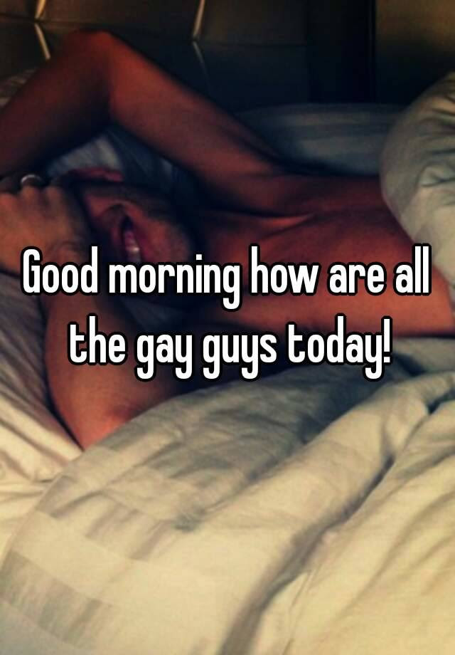 Good Morning How Are All The Gay Guys Today