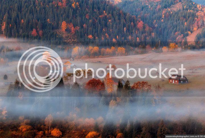 photo Alexander-Naumenko-1_zpswvbex6b5.jpg