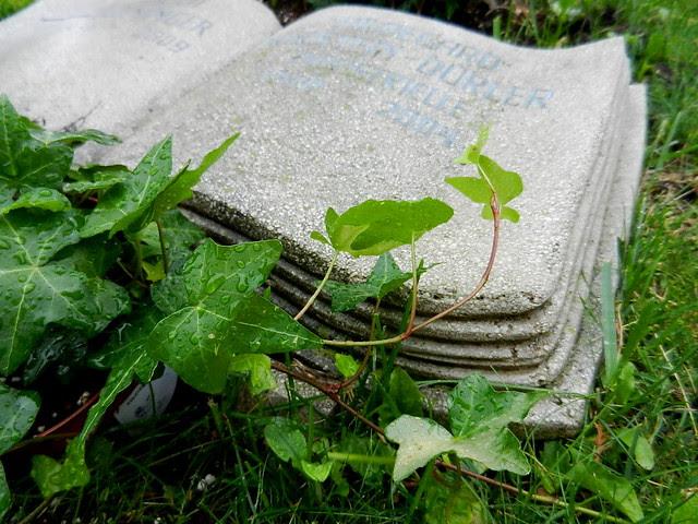 Friedhof_Kahlenbergerdorf_2012_10