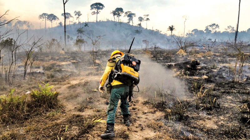 Members of the IBAMA forest fire brigade fight burning in the Amazon area of rural settlement PDS Nova Fronteira, in the city of Novo Progresso, Para state, northern Brazil.