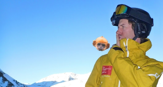 How to train your Monkey – Skiing Psychology