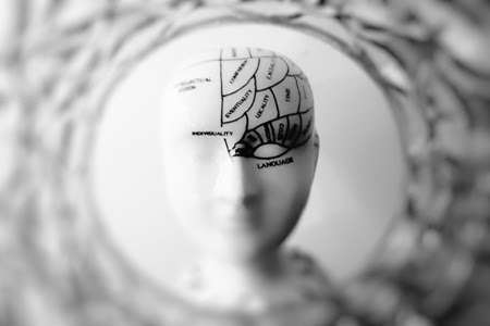 What Neuroscience Reveals About Creating Better Leaders In Today's Organizations