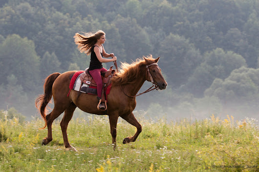 5 of the Best Places to Go Horseback Riding in GA - Glen-Ella Springs Inn