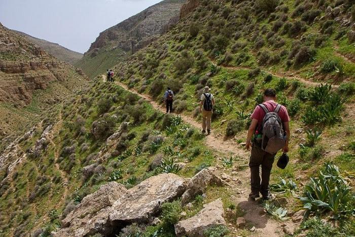 Путь Авраама. Главная дорога мира былых времен