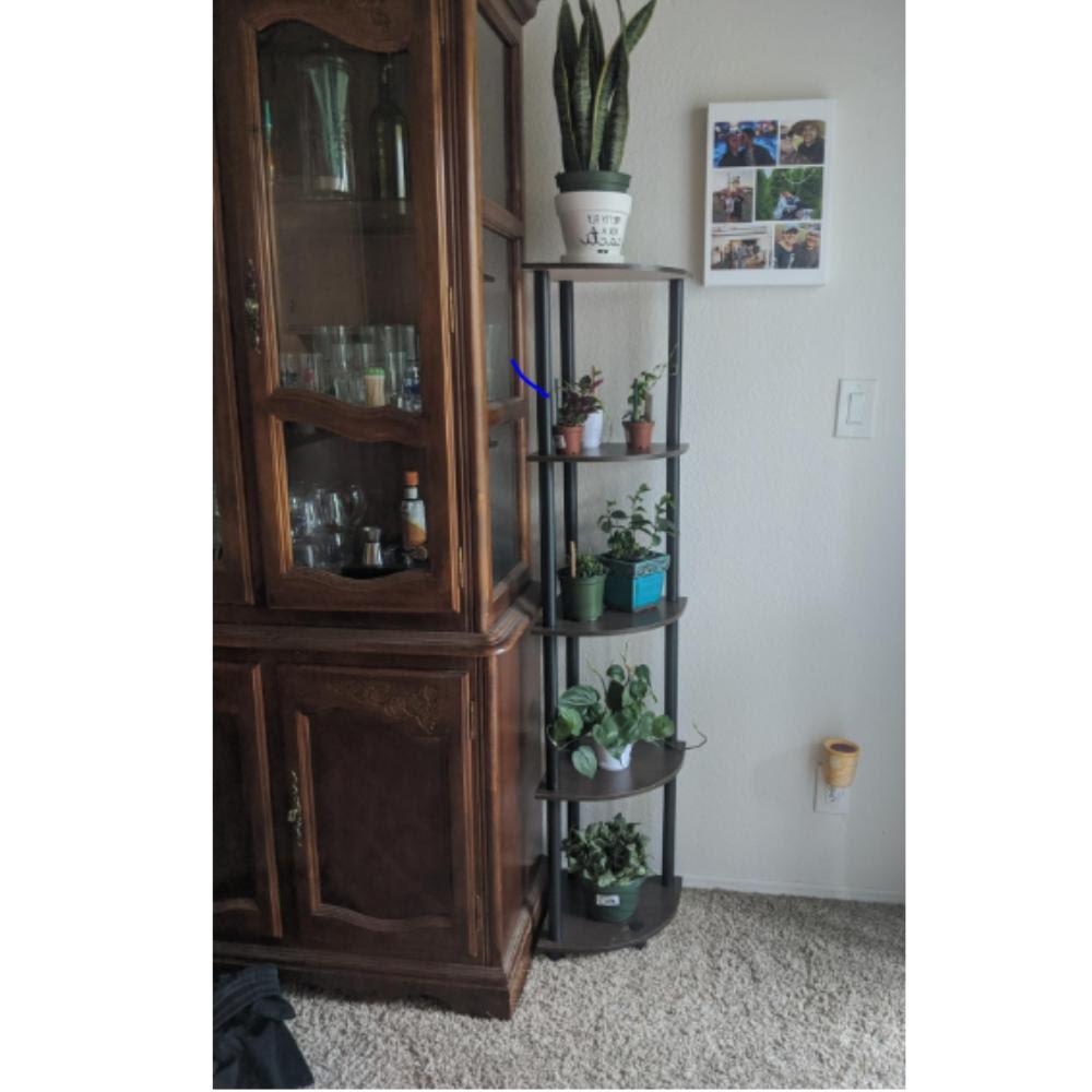 5 Tier Living Room Corner Shelf Wood Display