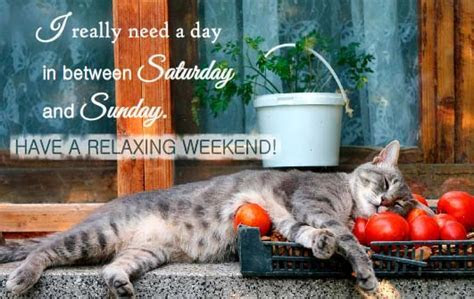 I Really Want To Relax! Free Enjoy the Weekend eCards