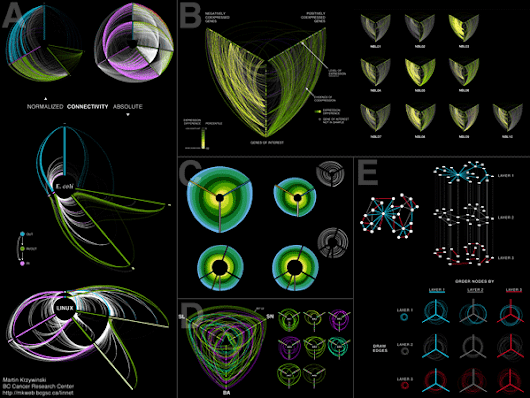 Hive Plots - Linear Layout for Network Visualization - Visually Interpreting Network Structure and Content Made Possible