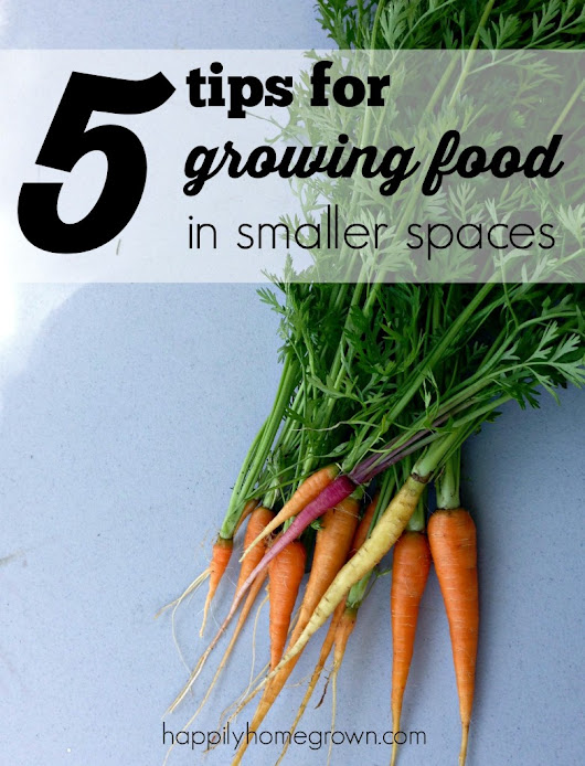 5 Tips for Growing Food in Smaller Spaces - Happily Homegrown