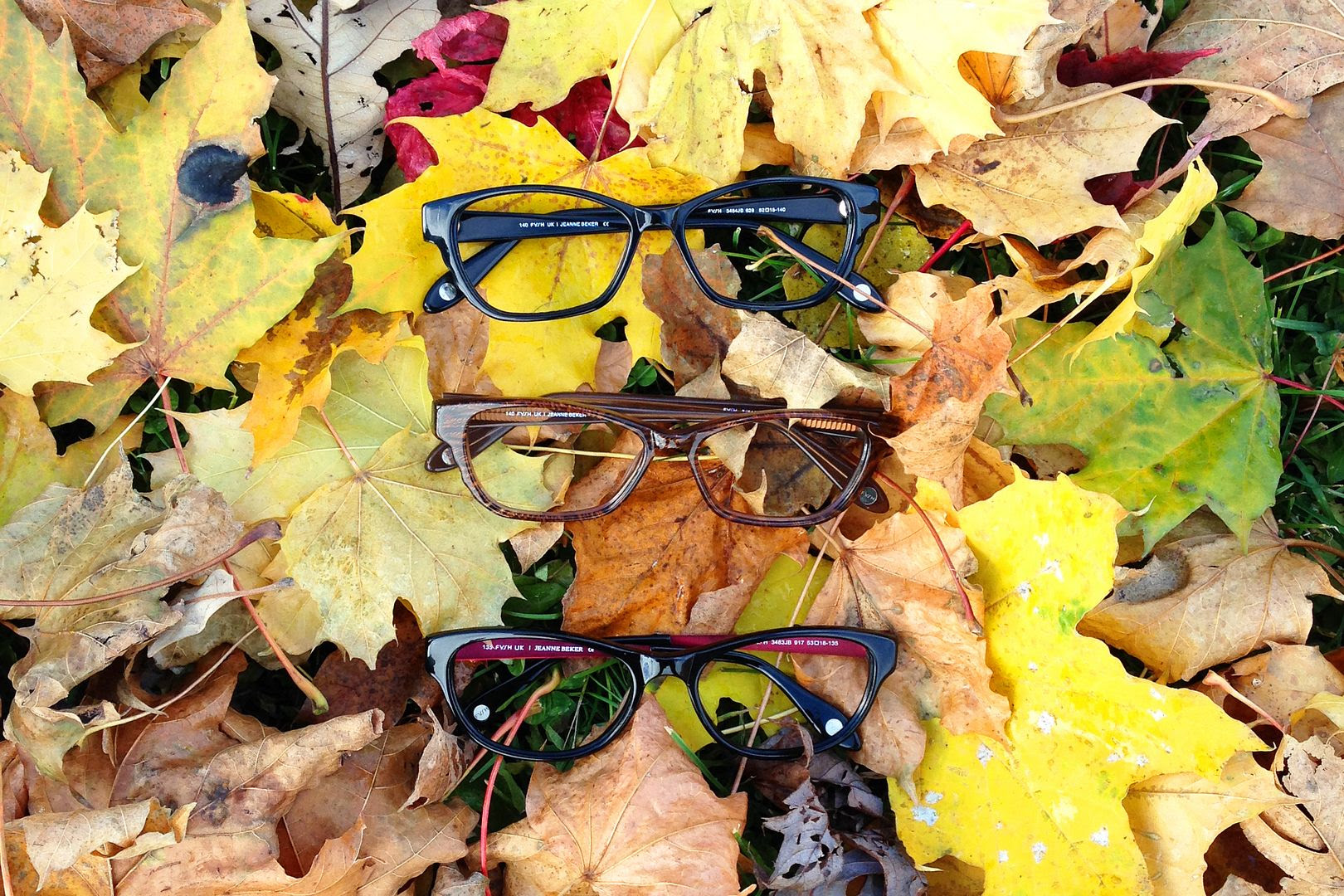 photo hmforisabelmarant-fyshuk-eyeglasses-hm-isabelmarant-5_zpsebc3a406.jpg