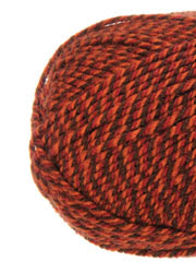 Plymouth Yarn® Encore Worsted Thanksgiving
