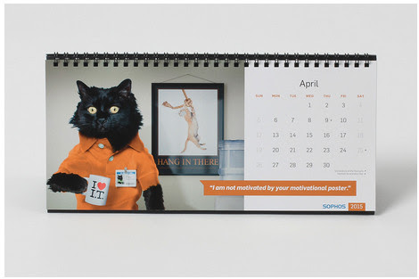 Are You Looking for a Cat Calendar? - Pet Photography of Diana Lundin