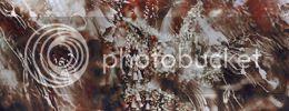 http://i757.photobucket.com/albums/xx217/carllton_grapix/4a.jpg