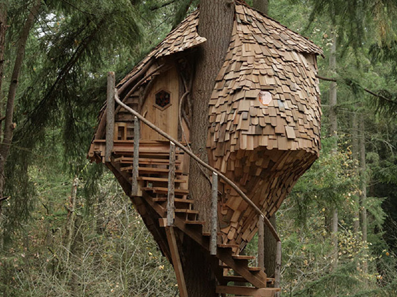 treehousemasters3_fullsize_story1