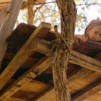 treehouse_platform