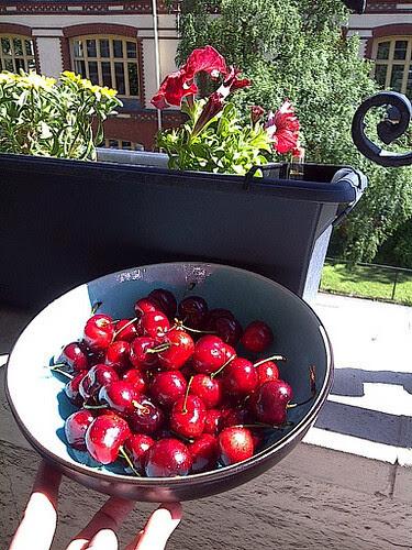 cherries.jpg by karlakp