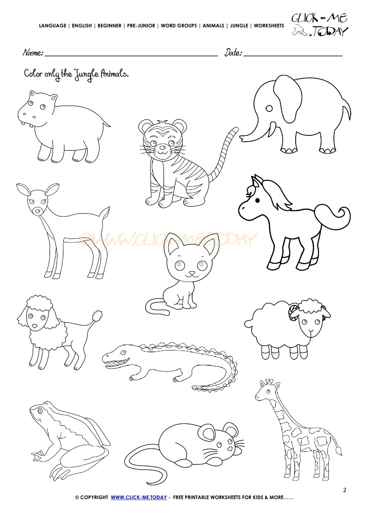 12 Best Images Of Polar Animal Worksheets Arctic Animals Worksheets  Preschool, Polar Bear - Coloring Pages