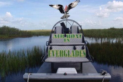 Gallery - Airboat In Everglades