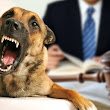 Dog Bites Cases: Investigating & Litigating - LawPracticeCLE