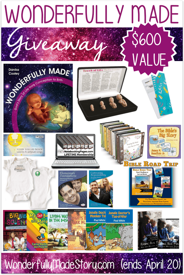 Wonderfully Made Giveaway