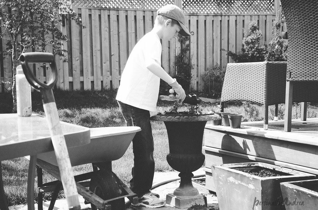 Plant a Container Herb Garden | personallyandrea.com