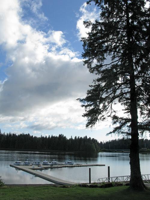 view from Fireweed Lodge, Klawock, Alaska