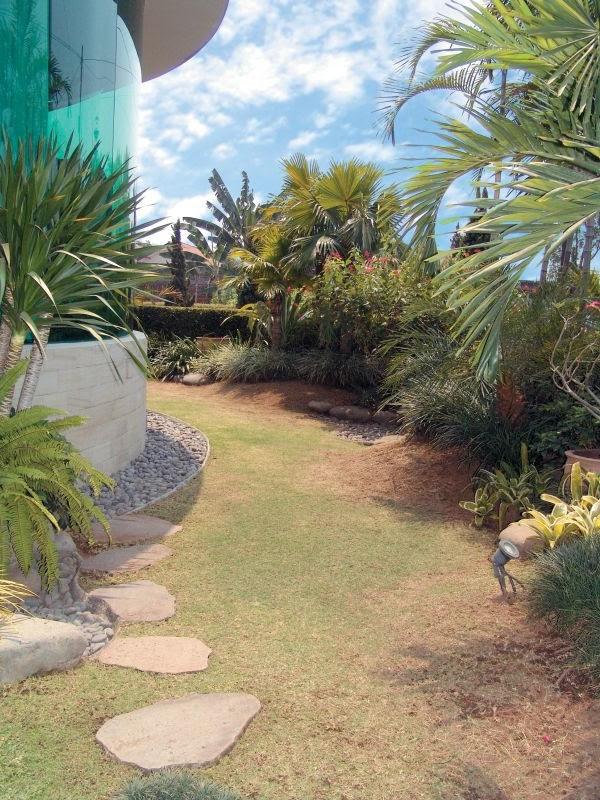 Best Courtyard Home Garden