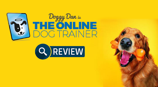 Does The Online Dog Trainer Really Work in 2018? Doggy Dan's Training Complete Review | Little Paws Training
