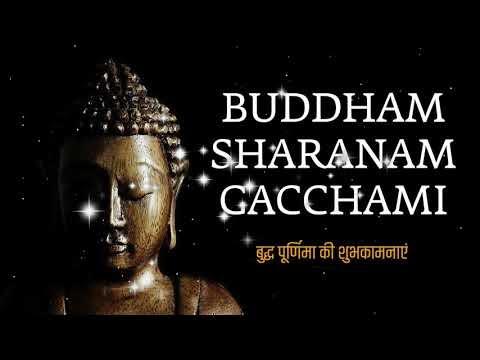 Buddham Sharanam Gacchami मैं बुद्ध की शरण लेता हूं।