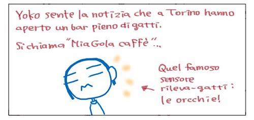 """Yoko sente la notizia che a Torino hanno aperto un bar pieno di gatti. Si chiama """"MiaGola caffe'""""… Quel famoso sensore rileva-gatti: le orecchie!"""
