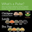 Mynd: 1000+ images about Pulses on Pinterest | Health, Bean sprouts and ...