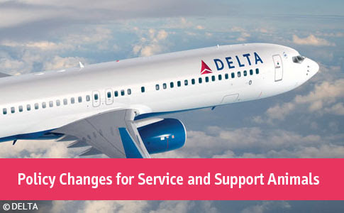 Delta's Policy Response After a Passenger was Severely Attacked by an Unrestrained Emotional Support Dog - DogsBite.org
