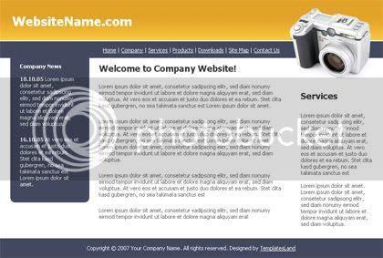 Camera Online Orange HTML Web Template