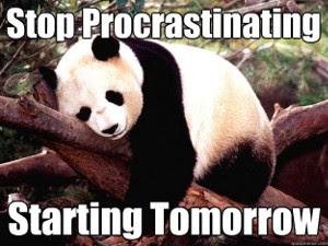 procrastinatingpanda_300