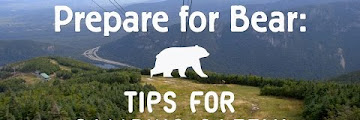 Bear Proofing Your Campsite Download Sound Mp3 and Mp4