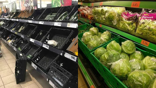 "The Sun en Twitter: ""Spanish supermarkets are overflowing with lettuce. What is going on?  """