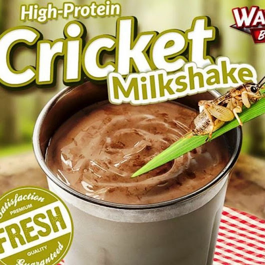 Would you like crickets with that? Farming insects for protein powder, and other food trends to watch