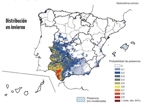 Distribución de la golondrina común en periodo de invernada en España